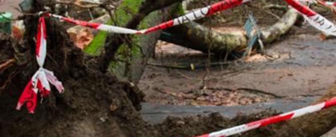 Roma in ginocchio per il maltempo. Cade un albero e ferisce una donna