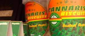 """A Rimini un'azienda offre cannabis ai dipendenti: """"È per rilassarli"""""""