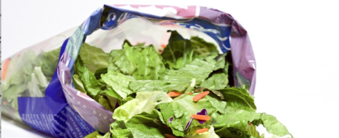 Topo nella busta dell'insalata: famiglia genovese sotto antibiotici