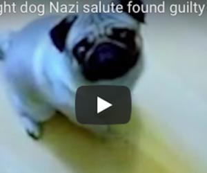 Insegna al suo cane il saluto nazista: condannato per crimine d'odio (video)