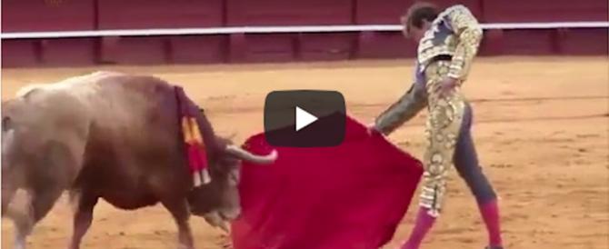 Il torero entra nell'arena e il toro gli squarcia una gamba (video)