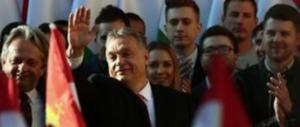 FdI con Orban, Delmastro a M5S e Lega: «Da voi solo una supercazzola»