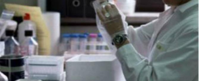 Sperma nello spazio per concepire l'uomo, parte l'esperimento Nasa