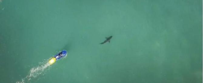 Australia, terrore in alto mare: squalo di 4 metri attacca un surfista. Rinviata gara del Mondiale