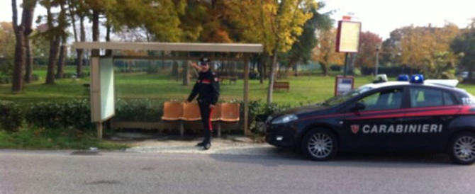 Lupo ucciso e appeso alla fermata del bus: due denunciati. La ricostruzione