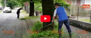 La protesta di Baldelli: «Contro i tagli ai Comuni, faccio il giardiniere» (video)