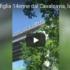 Francavilla, getta la figlia dal cavalcavia e minaccia il suicidio (video)