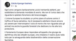 post-della-kyenge