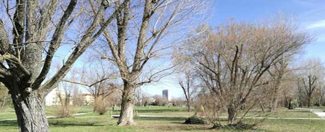 Sequestra madre e figlio in un parco di Rimini. Arrestato un extracomunitario