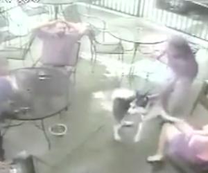 Cane aggredisce in viso un'ex modella e la proprietaria fugge (video)