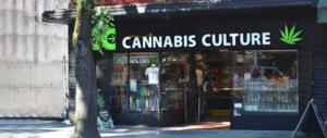"""San Patrignano contro la cannabis light: non è affatto """"leggera"""", lo dimostra una ricerca (video)"""