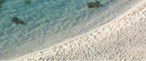 Tragedia a mare: sepolto per gioco sotto la sabbia, muore annegato