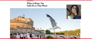 «Roma sporca e in balia dei gabbiani»: l'affondo del Nyt contro Virginia Raggi