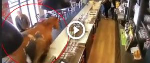 Cavallo al galoppo in un bar di Parigi. L'irruzione fa il giro del web (video)