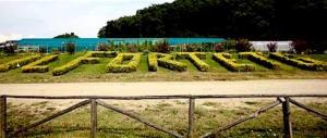 FdI e Fi: intervenire subito per fermare la comunità-setta rossa del Forteto