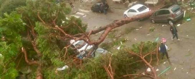 Tromba d'aria a Terracina, un morto e un ferito grave. Decine di alberi caduti (video)