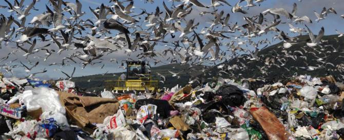 Allarme rifiuti, in Italia milioni di prodotti assorbenti finiscono in discarica