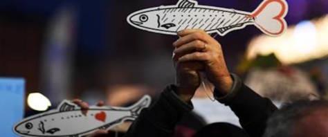 sardine Adnkronos