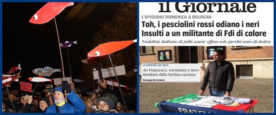 ollage sul caso dell'attivista di FdI insultato dalle sardine