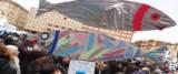 Sardine a Bologna foto Ansa