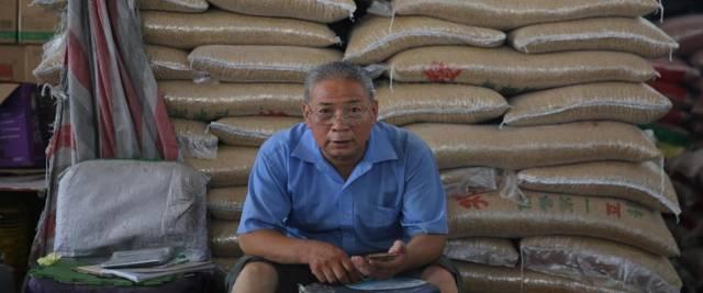crolla il mercato della soia cinese foto Ansa