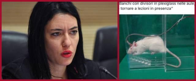 BeFunky-collage con foto Ansa della Azzolina e tweet di Becchi