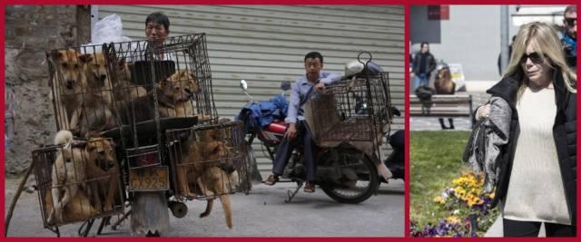BeFunky-collage con foto Ansa di Rita Dalla Chiesa (a destra) e del mercato di Yulin