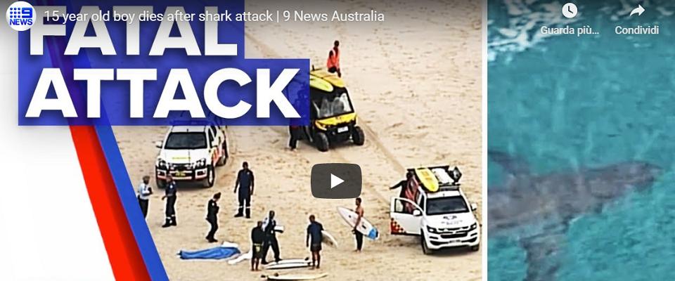 15enne muore dopo attacco dello squalo frame da video Youtube