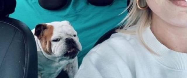Emma addio al suo cane Gaetano foto da Tw