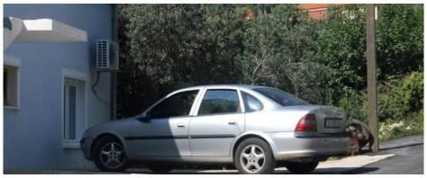 bambino abbandonato auto