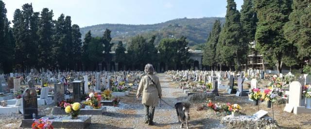 molestie al cimitero