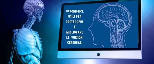 I probiotici sono l'arma contro il decadimento e l'invecchiamento del cervello. Lo studio del Cnr