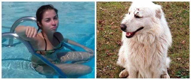 cani ragazza uccisa Soverato