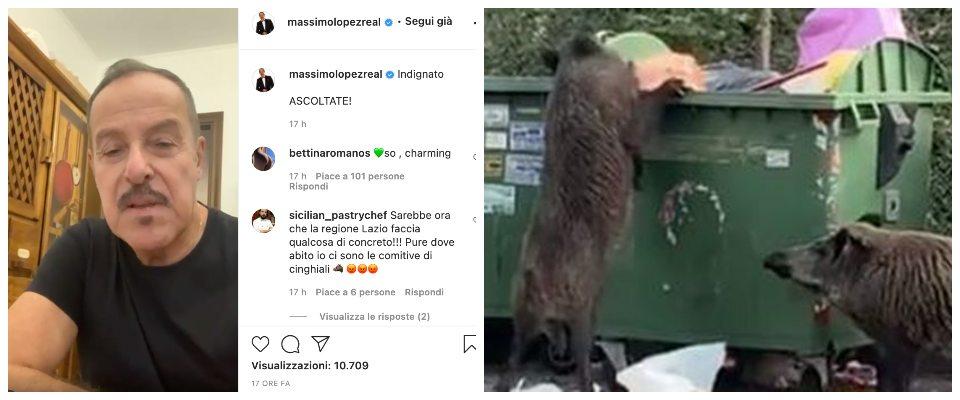 """Massimo Lopez assalito da un cinghiale si sfoga sul web: """"Tra rifiuti e  animali Roma è uno schifo"""" (video) - Secolo d'Italia"""